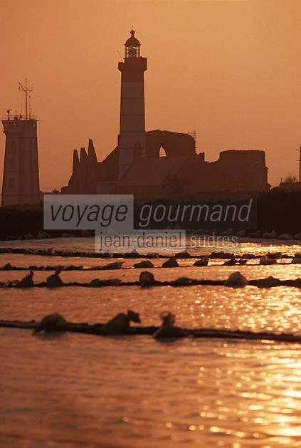 Europe/France/Bretagne/29/Finistère/Pointe Saint Mathieu: Le phare et culture sous serre de plastique