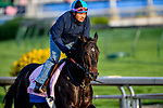 LOUISVILLE, KENTUCKY - APRIL 29: Serengeti Empress, trained by Tom Amoss, exercises in preparation for the Kentucky Oaks at Churchill Downs in Louisville, Kentucky on April 29, 2019. John Voorhees/Eclipse Sportswire/CSM