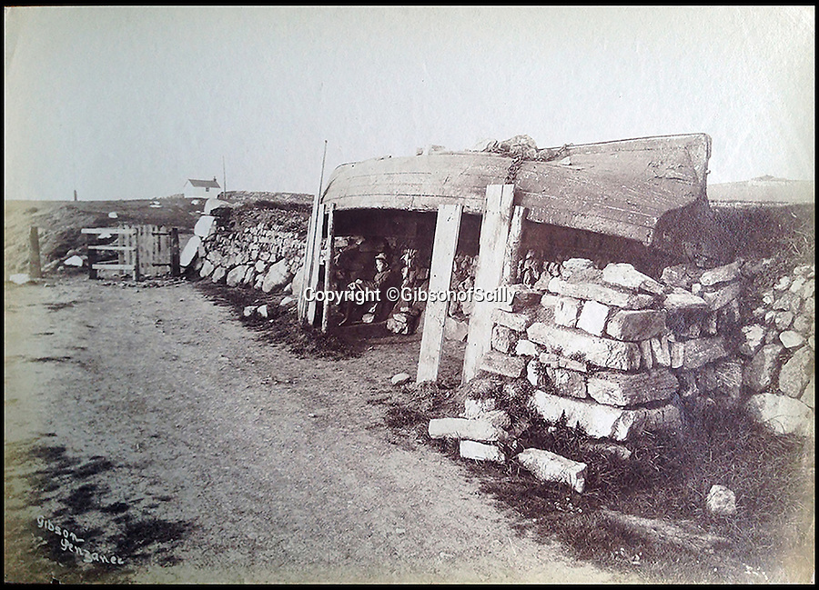 BNPS.co.uk (01202 558833)<br /> Pic: GibsonOfScilly/BNPS<br /> <br /> Rustic shelternear Mullion around 1900.<br /> <br /> An archive of eye-opening photographs documenting the grim reality of Poldark's Cornwall has emerged for sale for £25,000.<br /> <br /> More than 1,500 black and white images show the gritty lives lived by poverty-stricken families in late 19th and early 20th century Cornwall - around the same time that Winston Graham's famous Poldark novels were set.<br /> <br /> The collection reveals the lowly beginnings of towns like Rock, Fowey, Newquay and St Ives long before they became picture-postcard tourist hotspots.<br /> <br /> Images show young filth-covered children playing barefoot in squalid streets, impoverished families standing around outside the local tax office, and weather-beaten fishwives tending to the day's catch.<br /> <br /> The Cornish archive, comprising 1,200 original photographic prints and 300 glass negative plates, is tipped to fetch £25,000 when it goes under the hammer as one lot at Penzance Auction House.
