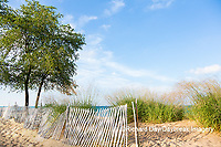 64795-01320 Fence along beach of Lake Huron, Port Huron, MI