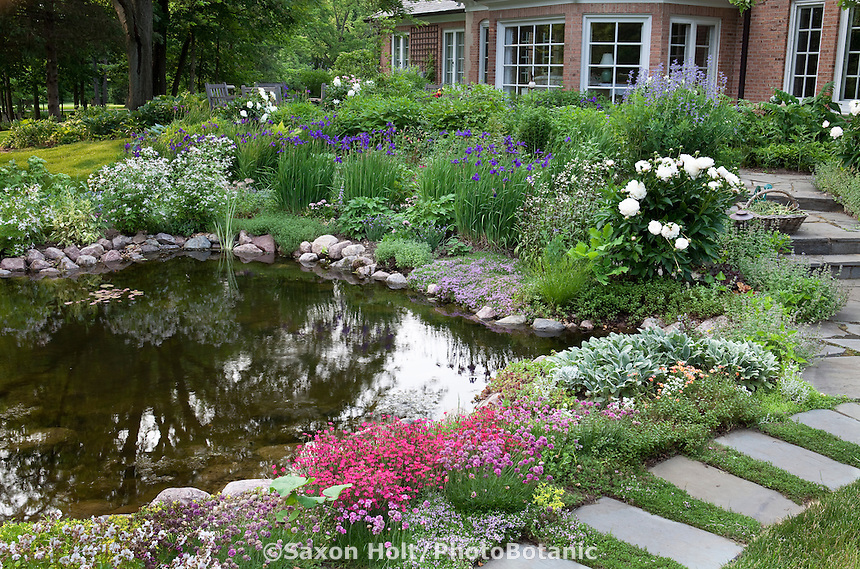 Backyard pond with stepping stone path and perennial garden, Illinois garden