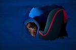 refugee, Serbia, Hungary, Austria, ph © Andreja Restek