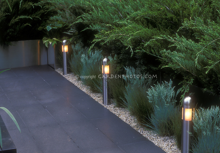 Garden Steps And Walkway Night Lighting Plant Amp Flower