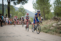Zdenek Stybar (CZE/Deceuninck - QuickStep) up the steepest part of the brutal Mas de la Costa: the final climb towards the finish<br /> <br /> Stage 7: Onda to Mas de la Costa (183km)<br /> La Vuelta 2019<br /> <br /> ©kramon