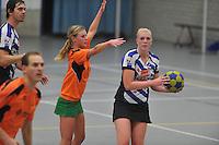 KORFBAL: HEERENVEEN: Blauw-Withal, 23-11-2013, Overgangsklasse A, KV Heerenveen - SDO/VerzuimVitaal, Eindstand 15-26, Evelyn Zoetendal (Heerenveen), ©foto Martin de Jong