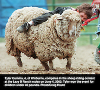 Tyler Gummo competes in sheep riding contest. Photo/Craig Houtz