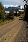 Country road winding toward Otago Harbour, Otago Peninsula, New Zealand