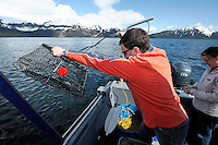 Dug Huntman, with his wife, Renee Huntman looking on, prepares to drop a shrimp pot overboard in Passage Canal near Decision Point, Prince William Sound, Southcentral Alaska on a sunny spring afternoon in early May. MR