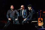 Concert of Pitingo at Teatro Nuevo Apolo in Madrid. 28 November 2019. (Alterphotos/ Francis Gonzalez)