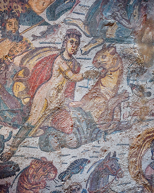 Close up detail picture of the Roman mosaics of the Diaeta of Arione used as a poetry and music room, room no 39 at the Villa Romana del Casale, first quarter of the 4th century AD. Sicily, Italy. A UNESCO World Heritage Site.<br /> <br /> The Diaeta of Arione is a large room of the Villa Romana del Casale where the Domina ( mistress of the Villa) gathered with members of the family to listen to poetry and music in a private setting. The floor mosaic depicts scenes of the marine court of Arione.