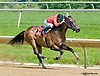 Peb Hughes winning at Delaware Park on 5/30/13