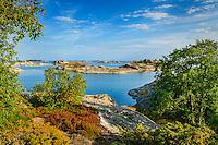 Lövträd kobbar och skär på Stora_nassa i Stockholms i ytterskärgård