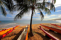 Rowing Boats on the Beach in Hawaii