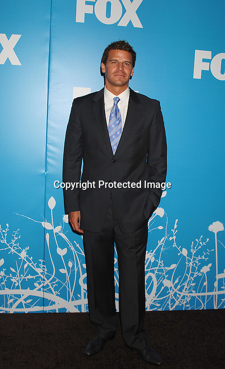 """David Boreanaz  of """"Bones""""..arriving at The FOX TV Upfront on May 17, 2007 at ..Wolman Rink in Central Park in New York City. ..Robin Platzer, Twin Images........212-935-0770"""