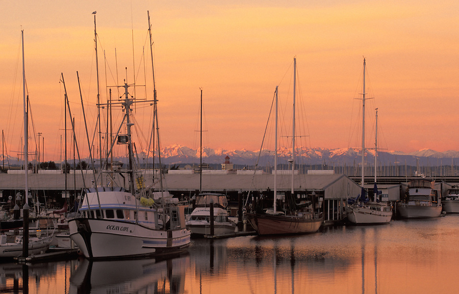 Everett Marina at sunrise with Olympic Mountains in background, Everett, Washington
