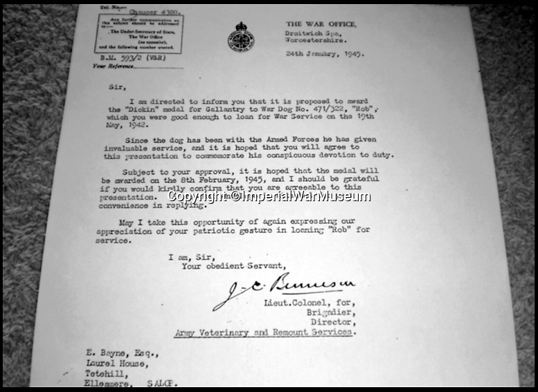 BNPS.co.uk (01202 558833)<br /> Pic:   ImperialWarMuseum/BNPS<br /> <br /> The letter from the War Office informing the Bayne family of Rob's Dickin Medal award from the PDSA.<br /> <br /> The remarkable stories of the 71 heroic animals who have received the pet equivalent of the Victoria Cross are told in a new book.<br /> <br /> They include a dog who dragged his drowning handler to safety in a torrent of shells and machine gun fire and a carrier pigeon which flew 120 miles to raise the alarm for a bomber crew who had crashed into the sea.<br /> <br /> Their courageous acts, and others involving dogs, cats, pigeons and horses, feature in history teacher Philip Hawthorne's book, The Animal Victoria Cross: The Dickin Medal.