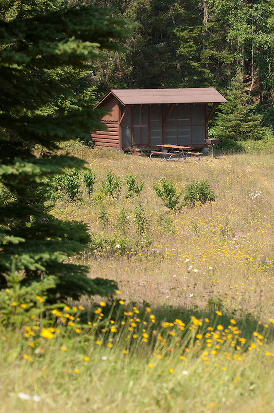 A backcountry shelter on Belle Isle at Isle Royale National Park.