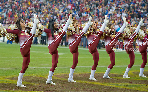 Washington Redskins cheerleaders perform during the break for the two-minute warning in the fourth quarter against theNew York Giants  at FedEx Field in Landover, Maryland on Sunday, November 29, 2015.  The Redskins won the game 20-13.<br /> Credit: Ron Sachs / CNP<br /> (RESTRICTION: NO New York or New Jersey Newspapers or newspapers within a 75 mile radius of New York City)