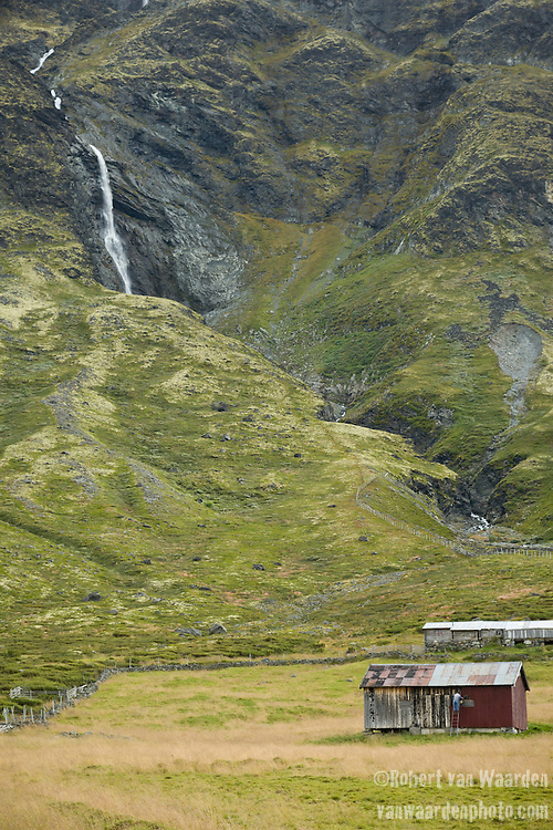 A Norwegian man paints the side of his barn in the Norwegian mountains. In the background, a waterfall cascades down the mountain.