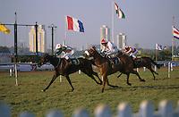 INDIA Mumbai, turf club, horse race course Mahalaxmi in Bombay  / INDIEN, Mumbai Bombay, Pferderennbahn Mahalaxmi