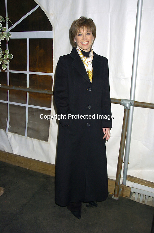 Dorothy Hamill At The Figure Skating In Harlem Benefit On February 72005
