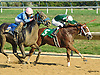 Swiss Confederate winning at Delaware Park on 9/9/15