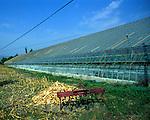 Large glasshouse used for horticulture, Fethiye province, Turkey