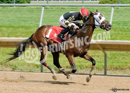 Do It for Don winning The Oh Say Stakes at Delaware Park on 6/29/13