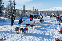 Kevin Harper leaves the 2015 Junior Iditarod start on the Denali Highway on on Sunday March 1, 2015.<br /> <br /> <br /> (C) Jeff Schultz/SchultzPhoto.com - ALL RIGHTS RESERVED<br />  DUPLICATION  PROHIBITED  WITHOUT  PERMISSION