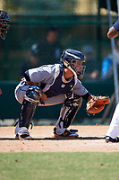 Detroit Tigers catcher Sam McMillan (32) during an Instructional League game against the Atlanta Braves on October 10, 2017 at the ESPN Wide World of Sports Complex in Orlando, Florida.  (Mike Janes/Four Seam Images)