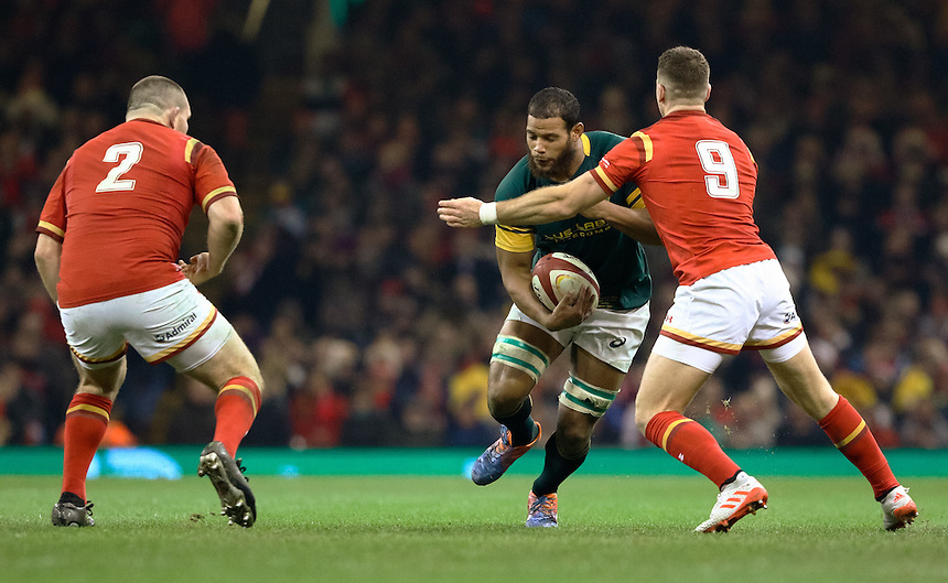 South Africa's Nizaam Carr under pressure from Wales' Gareth Davies<br /> <br /> Photographer Simon King/CameraSport<br /> <br /> International Rugby Union Friendly - Wales v South Africa - Saturday 26th November 2016 - Principality Stadium - Cardiff<br /> <br /> World Copyright &copy; 2016 CameraSport. All rights reserved. 43 Linden Ave. Countesthorpe. Leicester. England. LE8 5PG - Tel: +44 (0) 116 277 4147 - admin@camerasport.com - www.camerasport.com