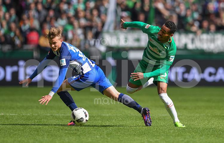 FUSSBALL     1. BUNDESLIGA      31. SPIELTAG    SAISON 2016/2017  SV Werder Bremen - Hertha BSC Berlin                          29.04.2017 Theodor Gebre Selassie (re, SV Werder Bremen) gegen Maximilian Mittelstaedt (li, Hertha BSC Berlin)