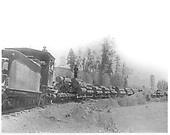 Rio Grande &amp; Pagosa Springs Railroad engine hauling flat cars loaded with logs beside river.<br /> Rio Grande &amp; Pagosa Springs    1900