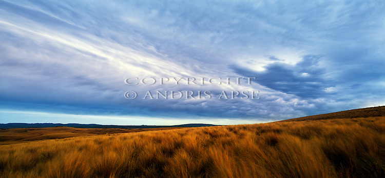 Tussock and clouds on the Rock and Pillar Range. Otago Region. New Zealand.
