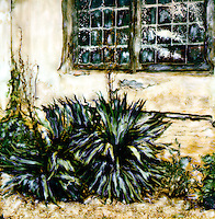 Old yucca plants stand as sentinels around a Boboli building.<br />