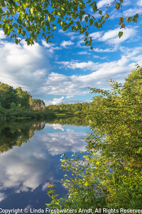 The east fork of the Chippewa River on a pretty summer day.