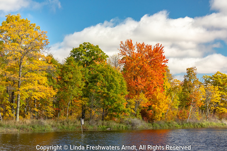 Pretty fall colors bordering a wilderness lake in northern Wisconsin.