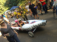 The Portland Adult Soap Box Derby held each summer at Mt. Tabor park in Portland Oregon