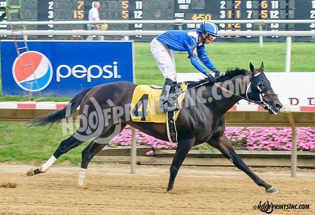 Lataam winning at Delaware Park on 7/20/15