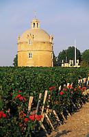 Europe/France/Aquitaine/33/Gironde/Pauillac: château Latour (AOC Pauillac) [Non destiné à un usage publicitaire - Not intended for an advertising use]