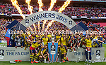 Arsenal vs Aston Villa  30th May 2015