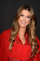 LOS ANGELES - JAN 9:  Delta Goodrem at the Lifetime Winter Movies Mixer at The Andaz on January 9, 2019 in West Hollywood, CA