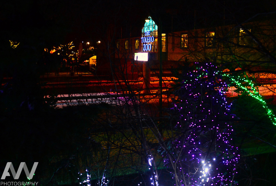 lights before christmas at the toledo zoo - Toledo Zoo Lights Before Christmas