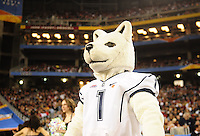Jan. 1, 2011; Glendale, AZ, USA; The Connecticut Huskies mascot Jonathan the Husky against the Oklahoma Sooners in the 2011 Fiesta Bowl at University of Phoenix Stadium. The Sooners defeated the Huskies 48-20. Mandatory Credit: Mark J. Rebilas-