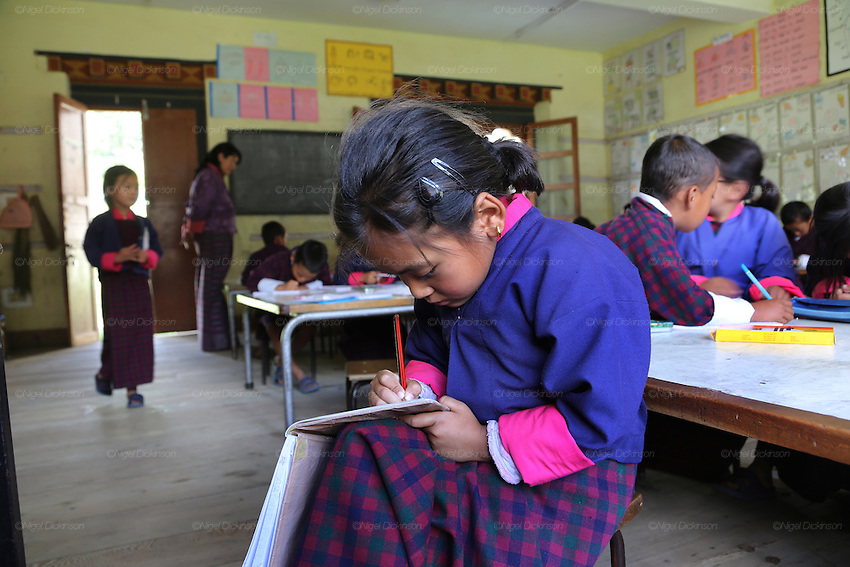 Girl in classroom studying at Wangdue Chhoeling Lower Secondary School, Bumthang, Bhutan..Bhutan the country that prides itself on the development of 'Gross National Happiness' rather than GNP. This attitude pervades education, government, proclamations by royalty and politicians alike, and in the daily life of Bhutanese people. Strong adherence and respect for a royal family and Buddhism, mean the people generally follow what they are told and taught. There are of course contradictions between the modern and tradional world more often seen in urban rather than rural contexts. Phallic images of huge penises adorn the traditional homes, surrounded by animal spirits; Gross National Penis. Slow development, and fending off the modern world, television only introduced ten years ago, the lack of intrusive tourism, as tourists need to pay a daily minimum entry of $250, ecotourism for the rich, leaves a relatively unworldly populace, but with very high literacy, good health service and payments to peasants to not kill wild animals, or misuse forest, enables sustainable development and protects the country's natural heritage. Whilst various hydro-electric schemes, cash crops including apples, pull in import revenue, and Bhutan is helped with aid from the international community. Its population is only a meagre 700,000. Indian and Nepalese workers carry out the menial road and construction work.