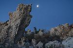 Mono Basin, CA.  Nikon photos by Frank Balthis