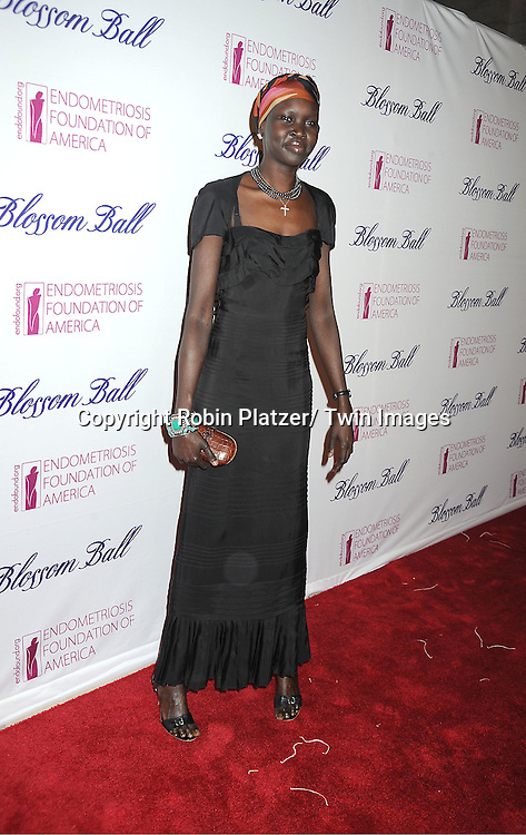 model Alek Wek attends the Endometriosis Foundation of America 4th Annual  Blossom Ball on March 15, 2012 at The New York Public Library in New York City.