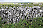 Dry stone wall and carboniferous limestone landscape of the Burren, County Clare, Ireland