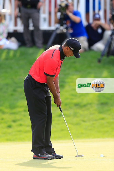 Tiger Woods (USA) takes his putt on the 18th green during Sunday's Final Round of the 2013 Bridgestone Invitational WGC tournament held at the Firestone Country Club, Akron, Ohio. 4th August 2013.<br /> Picture: Eoin Clarke www.golffile.ie