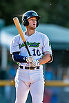 29 August 2019: Vermont Lake Monsters infielder Marty Bechina at bat in the first inning against the Connecticut Tigers at Centennial Field in Burlington, Vermont. The Lake Monsters fell to the Tigers 6-2 in the first game of their NY Penn League double-header.  Mandatory Credit: Ed Wolfstein Photo *** RAW (NEF) Image File Available ***